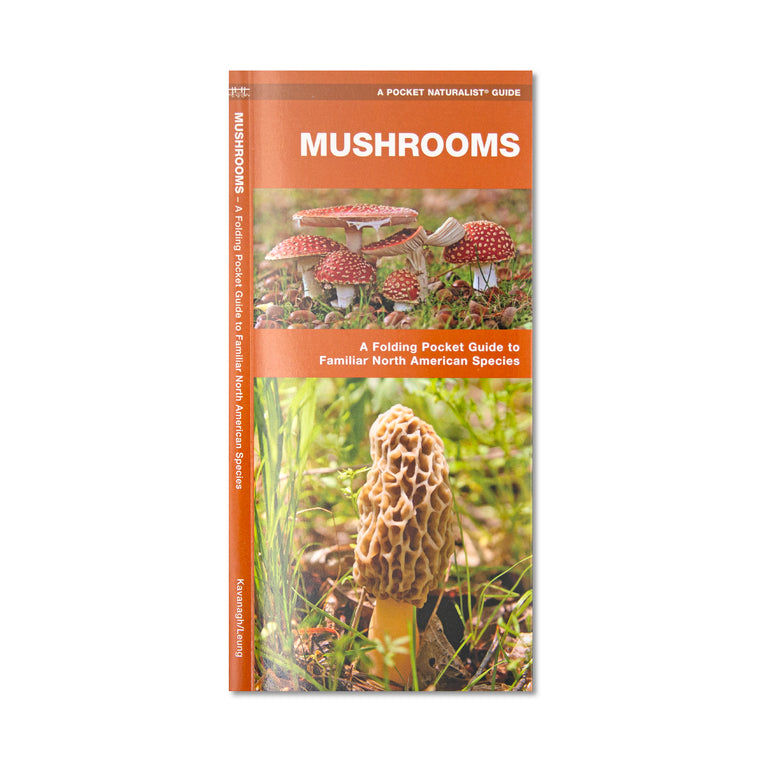 Mushrooms Pocket Guide