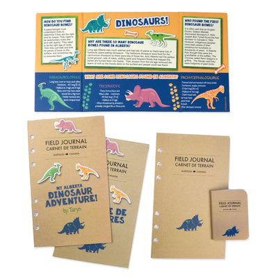 Paleontology set for 18 inch dolls field journal project board and dinosaur adventure story journal