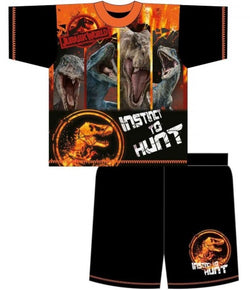 Jurassic World Summer pjs Licensed Pjs size 5/6 left