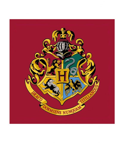 PRE ORDER Floor mat rug Harry Potter