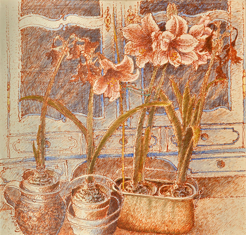 Amaryllis and Baroque Vitrine
