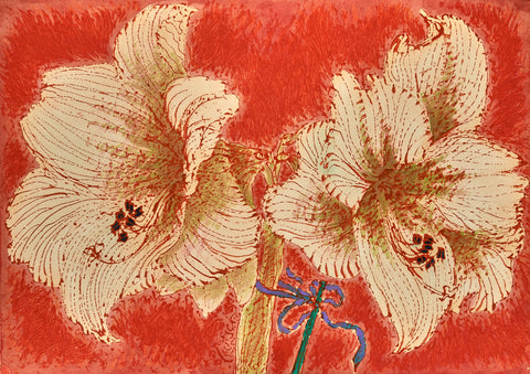 Amaryllis on Red