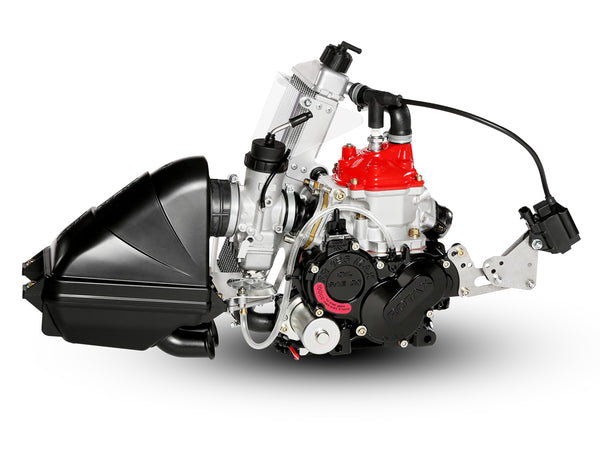 ROTAX 125 MINI MAX EVO ENGINE