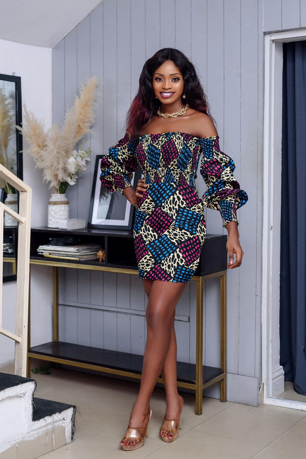 Ahunna Multicolor Ankara African Print Dress