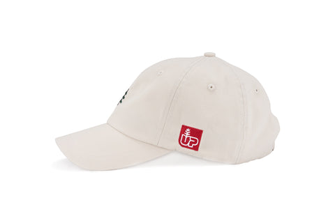 All Grown Up Dad Cap