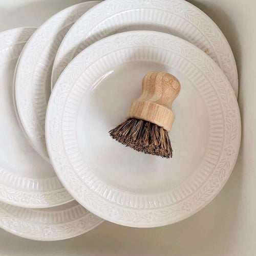 Biodegradable Dish Scrubber