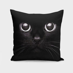 My Decor Center - Free Shipping - Scorpius, Black Kitty - Throw Pillow