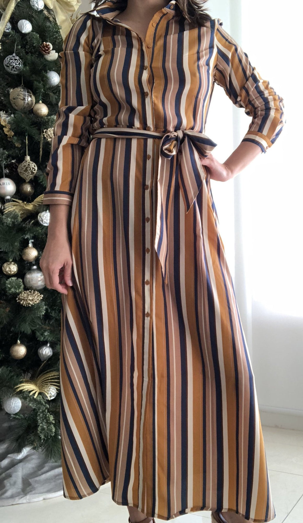 Earth Stripe Dress