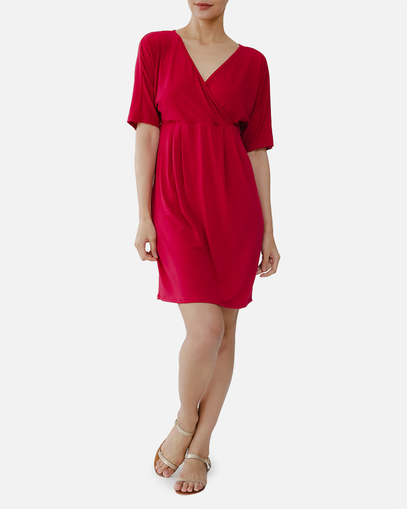 Francine Nursing Dress