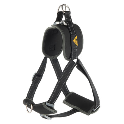 Padded Dog Walking Harness