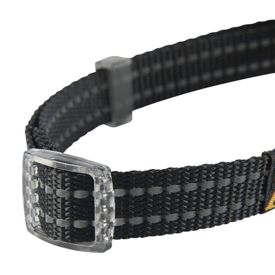 LED Lighted Collar