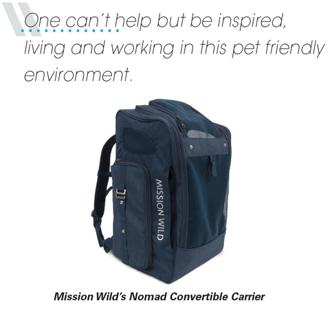 Photo of Mission Wild's Nomad Convertible Carrier, available in Spring 2018