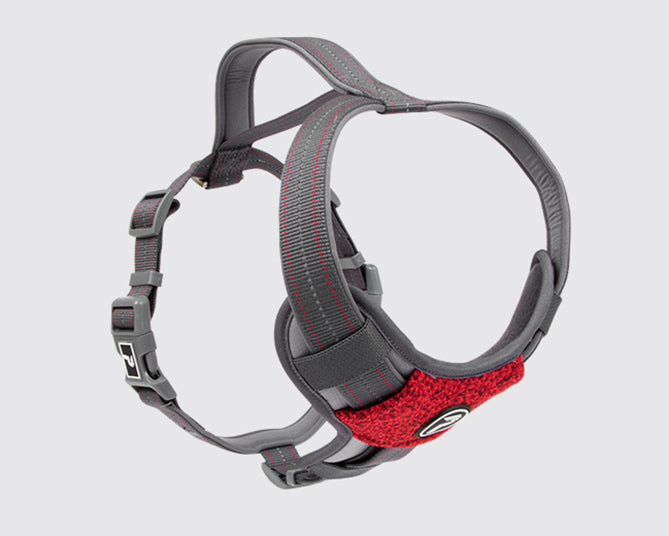 Pathfinder Harness