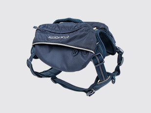 Pac Heights Commuter Harness