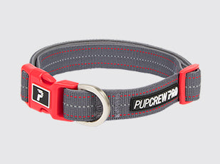 Pathfinder Collar