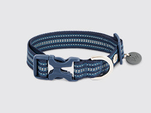 Mission Day Trip Collar