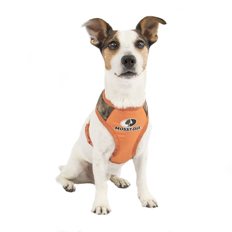 Picture from Mossy Oak™ Adjustable T-Strap Harness from SimplyDog by  Mission Pets