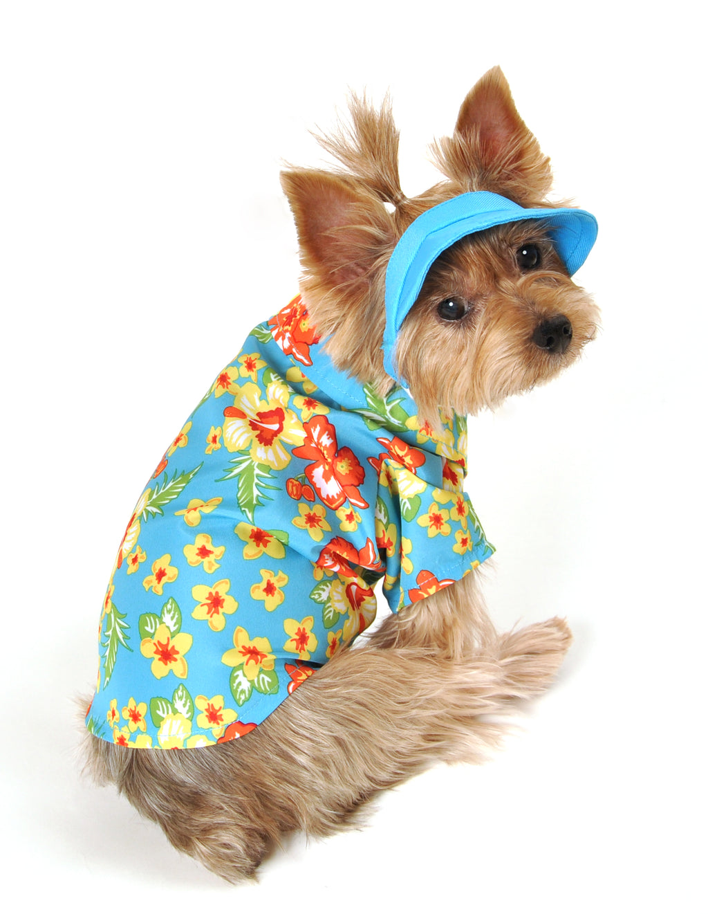 SimplyDog Hawaiian Shirt and Hat Set