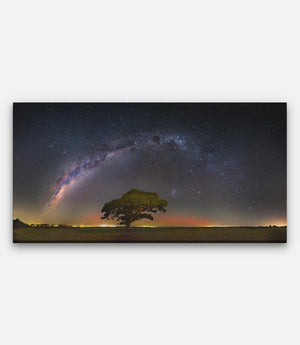 Tree Southern Aurora and Milkyway - Bells Fine Art
