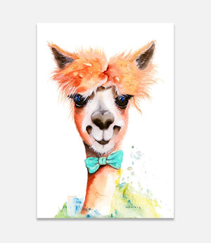 Alex Alpaca - Bells Fine Art