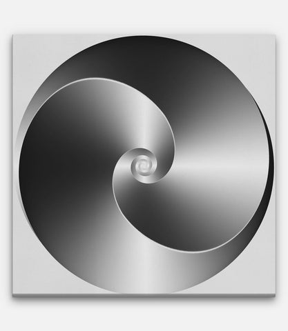 2 Fibonacci Twirl Lines with Black and White Gradient
