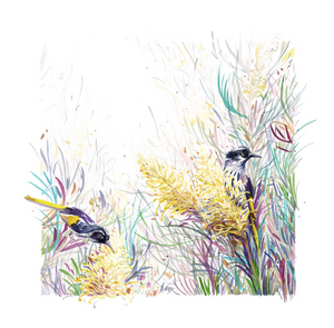 Honeyeaters in The Moonlight | Limited Edition - Bells Fine Art