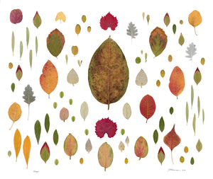 Hope Leaf Collage - Bells Fine Art
