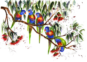 Lorikeets - Bells Fine Art