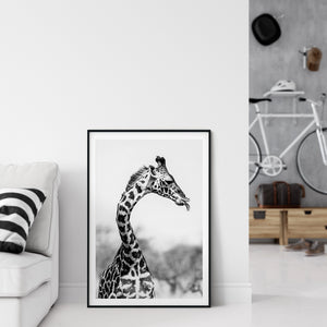 Cheeky Giraffe - Bells Fine Art