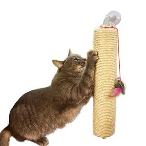 Lazy Cat Scratching pole post scratcher
