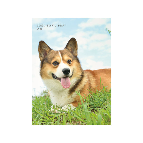 APJ B6 Monthly Poem Corgi