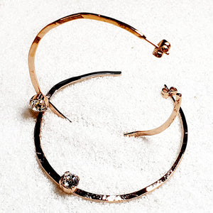 Aviary Swarovski Hoop Earrings