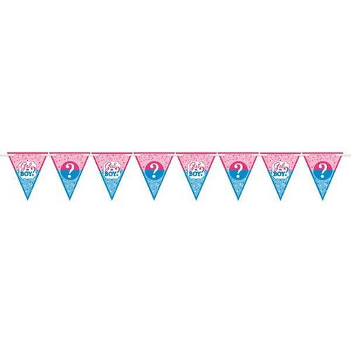 Girl Or Boy Pennant Banner - Amscan
