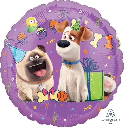 Secret Life Of Pets - 3D Star Piñata Staple Free - Piñata District