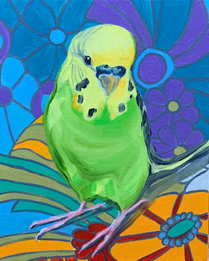 Retro Pop and the Green Budgie