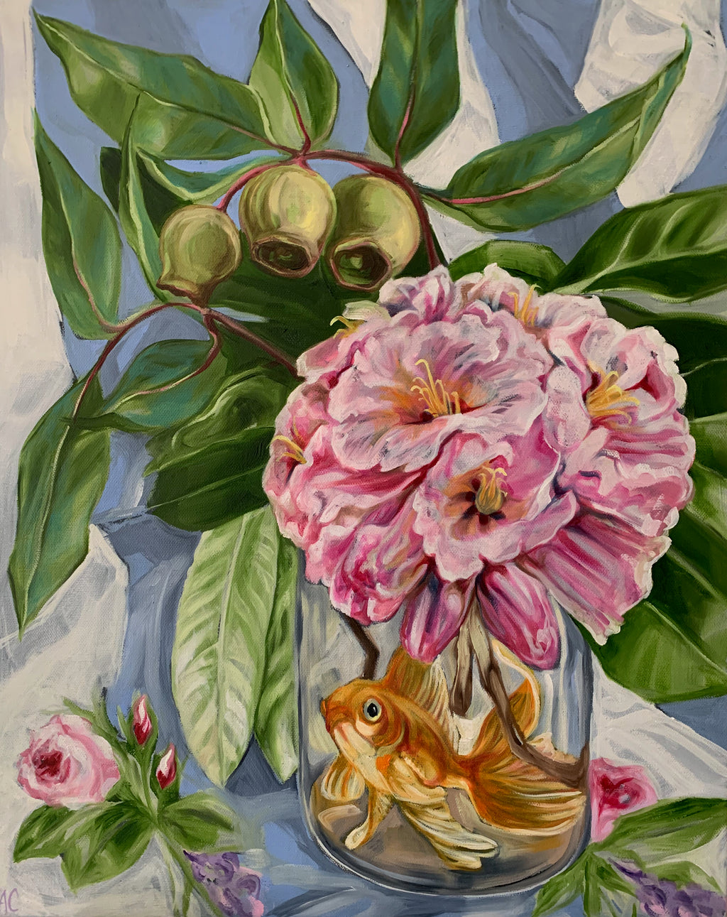 Roses, Rhodo and the Floaty Fish