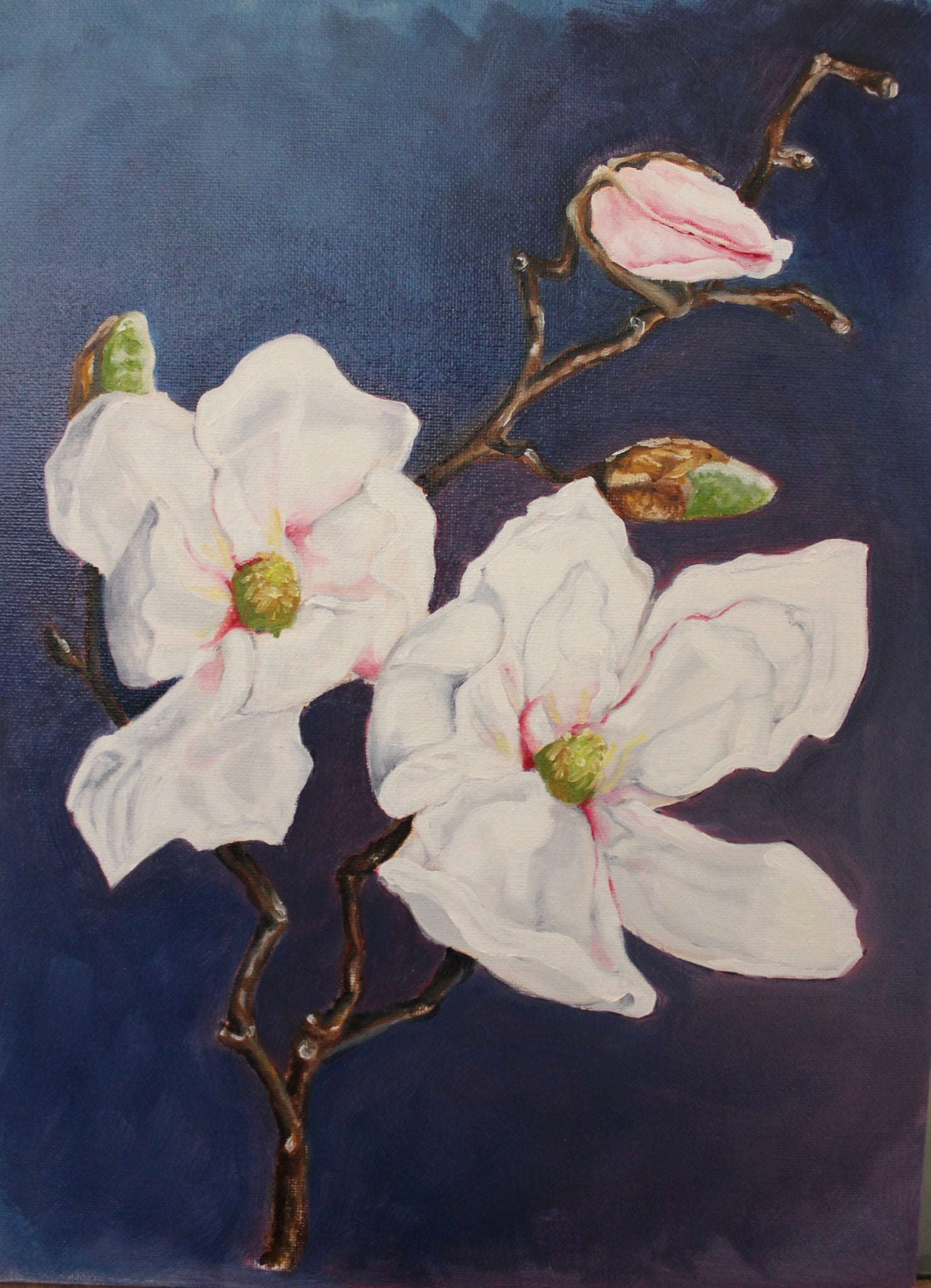 """White Magnolia Branch Study"" Original Oil Painting"