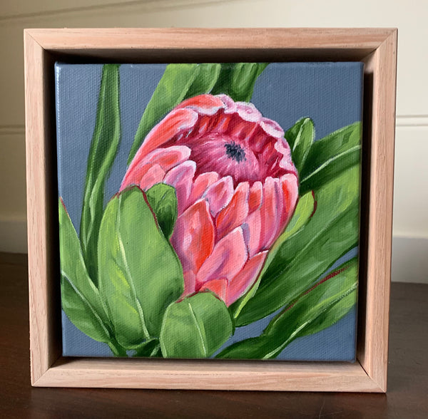 Little Protea Series #4
