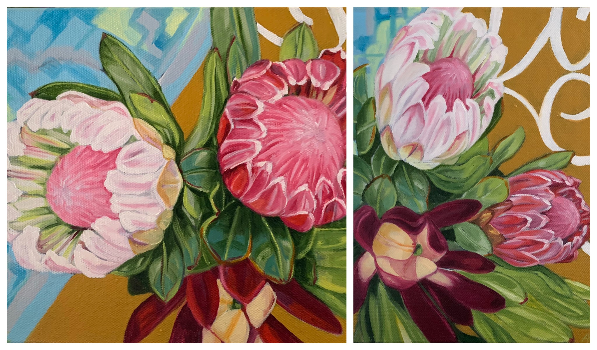 Small Proteas & Scrolls - Diptych