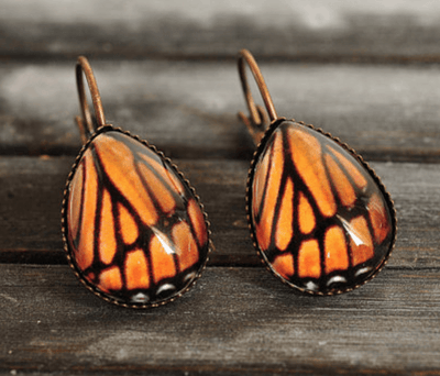Monarch Butterfly Earrings - Heartsi Co