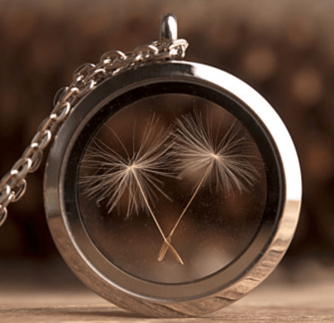 Dandelion Seed Necklace - Heartsi Co