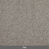 Primo Choice Super 5 Metre - Carpet - Dream Floors and Furniture Ashton-Under-Lyne, Manchester