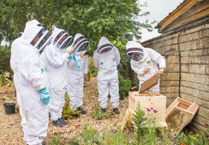 Beekeeper for a Day Gift Experience