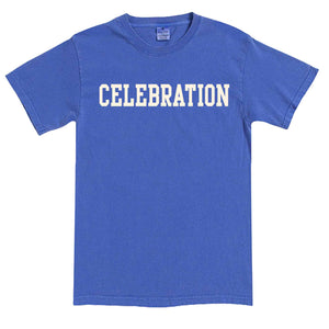 Men's Periwinkle Celebration Florida T-Shirt