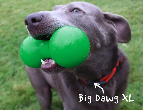 RuffDawg Big Dawg Assorted Colors