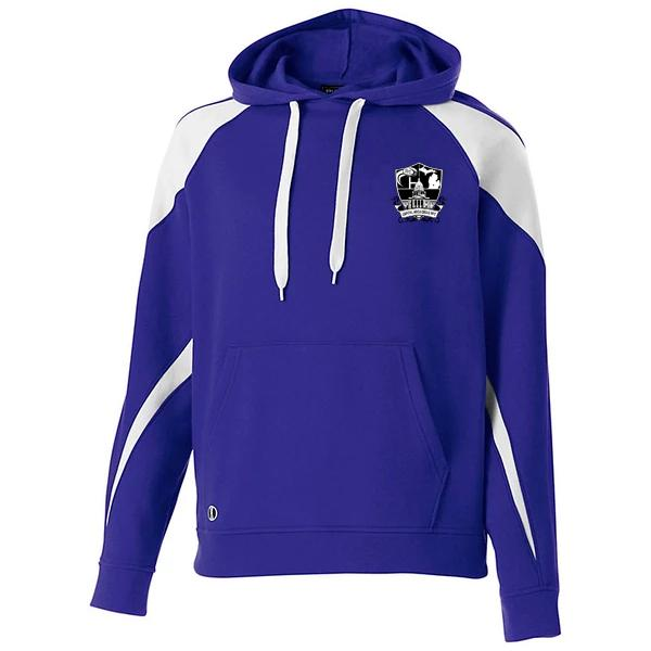 Capital Area Crisis Purple Prospect Hoody