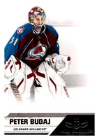 2010-11 Panini All-Goalies #20 Peter Budaj Avalanche NHL Mint