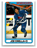 1990-91 O-Pee-Chee #107 Joe Cirella Mint