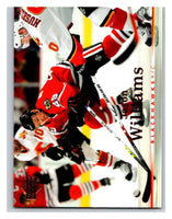 2007-08 Upper Deck #29 Jason Williams Blackhawks