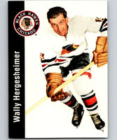 1994-95 Parkhurst Missing Link #26 Walter Hergesheimer Blackhawks NHL Hockey